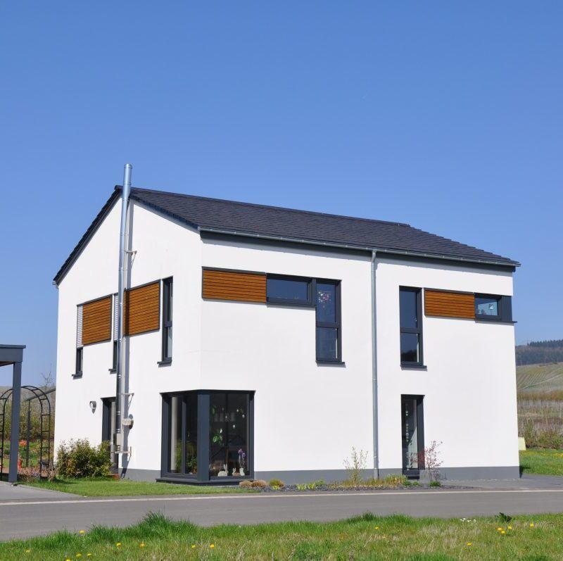Einfamilienhaus mit flachem Satteldach mit besonderer Fassadengestaltung mit Holzplanken und viel Glas
